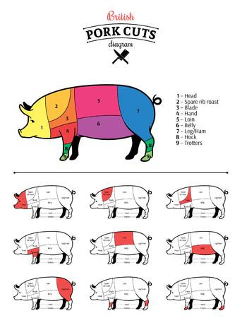 Schemat brytyjskich kawałków wieprzowiny.
