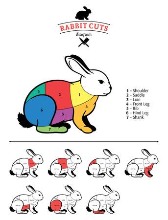 Rabbit cuts color diagram. Stock Illustratie