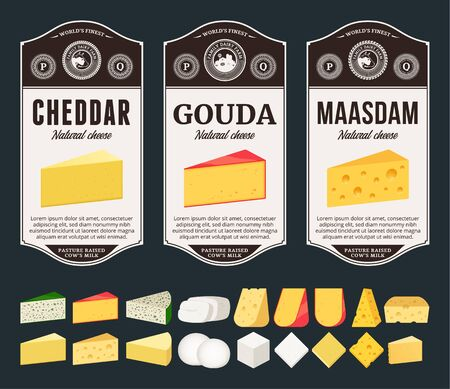 Vector cheese labels and packaging design templates. Different types of cheese detailed icons. Dairy products illustration for dairies, farms and groceries branding.