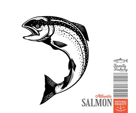 Vector jumping salmon fish illustration isolated on a white background Vecteurs