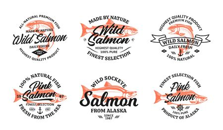 Vector salmon vintage on a white background. Atlantic, chinook, sockeye and pink salmon illustrations for groceries, fisheries, packaging, and advertising