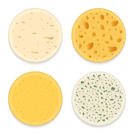 Set of vector different types of cheese realistic round patterns or textures 일러스트