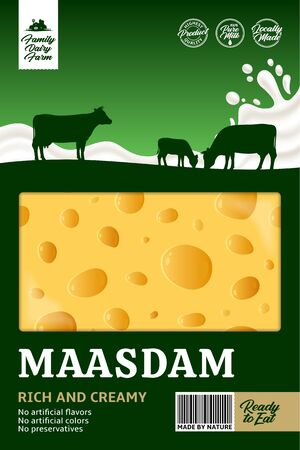 Vector maasdam cheese packaging with cows and milk splash. Realistic cheese texture