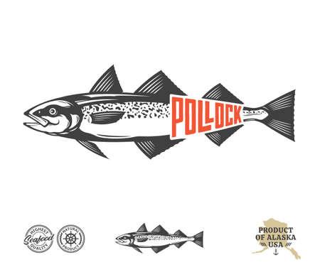Vector Alaska pollock label isolated on a white background. Pollock fish illustration