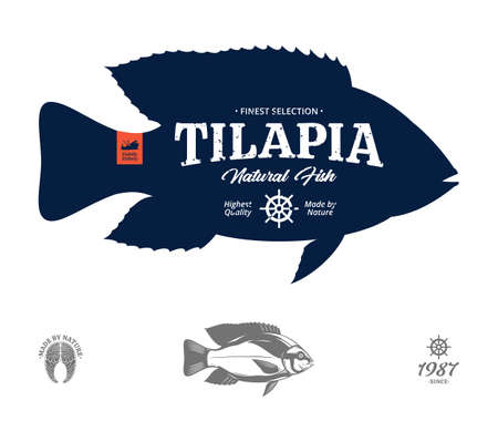 Vector tilapia natural fish label 矢量图像