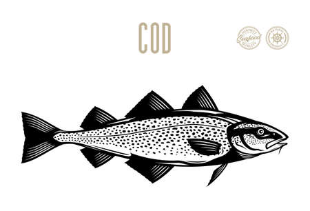 Vector cod fish illustration isolated on a white background Vecteurs
