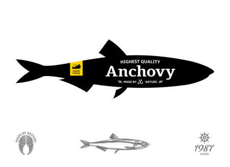 Vector anchovy seafood label isolated on a white background 矢量图像