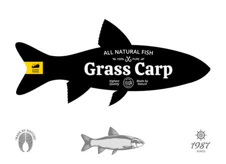 Vector grass carp seafood label 矢量图像