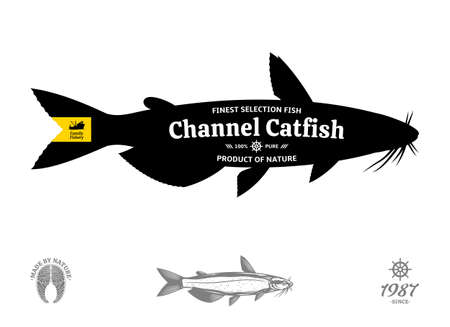 Vector channel catfish seafood label 矢量图像