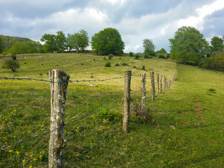 Fresh green grass field, separated by a barbwire fence with wooden poles, a little greener on one side, with a few trees and nice clouds in the background