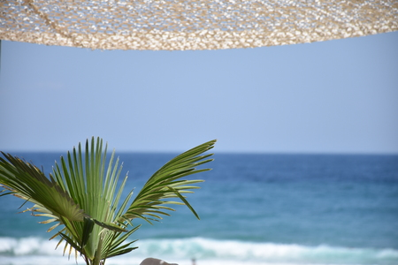 Sunny day under an awning, with palm leaves in the foreground and blue sea in the background
