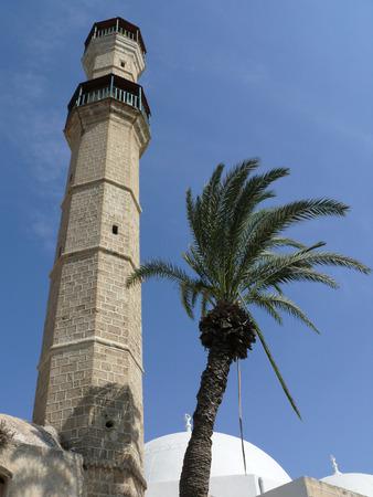 octogonal: Una vista hacia arriba en perspectiva de una torre octogonal y una palmera Foto de archivo
