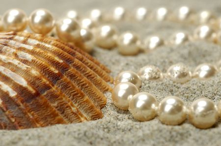 Sea shell with pearls on the sand photo
