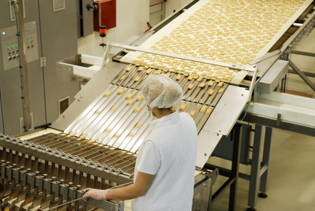 Biscuit and waffle production factory line