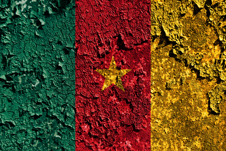 Old grunge Cameroon background flag Foto de archivo