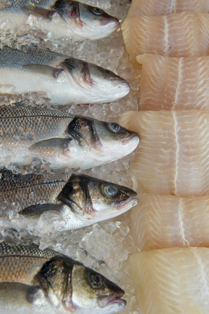 Fresh fish in the market , Sea fish pile top view