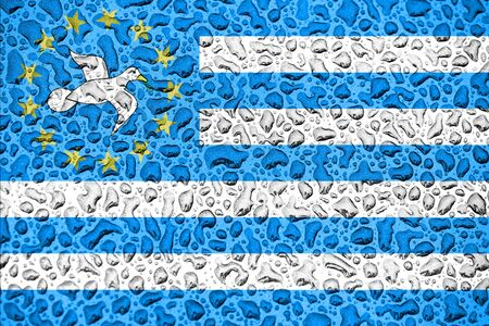 South Cameroon national flag made of water drops. Background forecast season concept.
