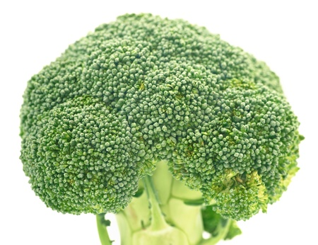 brassica: Close up Brassica silvestris on the white background