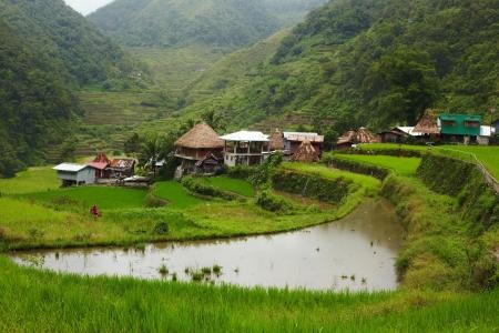 Rice terraces on Philippines mountains, Ifugao region, Bangaan village photo