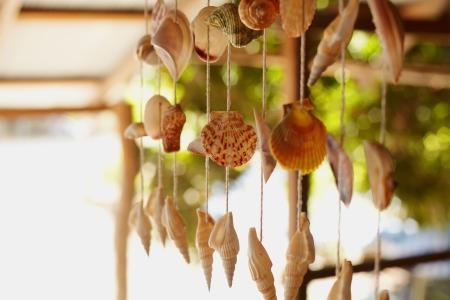 filaments: Seashels suspension on the filaments
