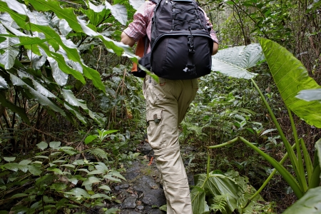 Along man walking with backpack in tropic jungle photo