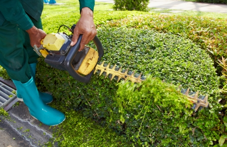 작업에 대한 정원 기계 도구 정원사 남자를 닫습니다