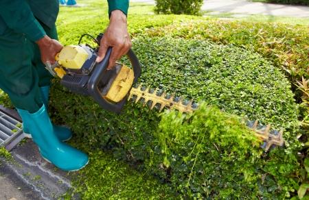 Close-up tuinman man met tuin mechanisch hulpmiddel voor baan Stockfoto