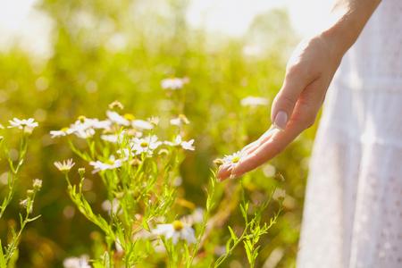 외부 햇빛 아래 풀밭에 외부에 꽃과 젊은 여성을 손바닥을 닫습니다