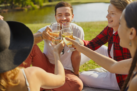 Drinking wine: Young people company sittting on the grass in the park for enjoying wing and communication