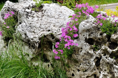 Porous natural boulder overgrown with grass and wild flowers Stock Photo
