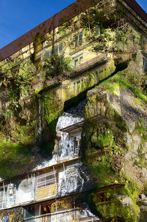 effluent: Double exposure-highest residential building-a rock covered with plants grown rapidly effluent water