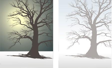 deserted: Tree In Winter Fog Illustration