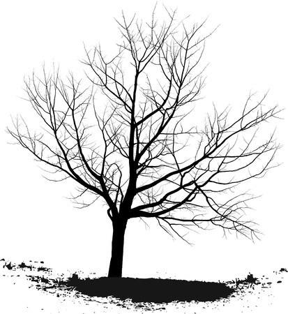 Cherry tree Illustration