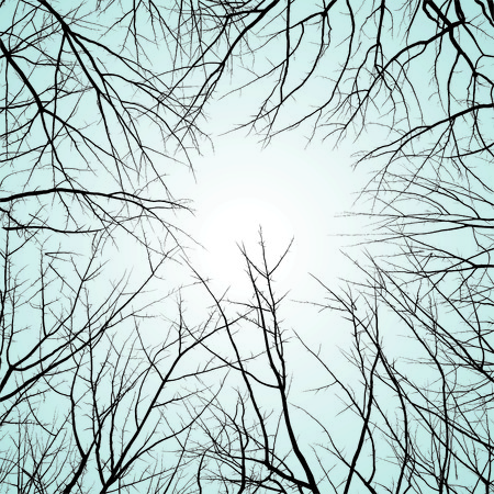 back lit: Winter natural background, vectors cartoon illustration