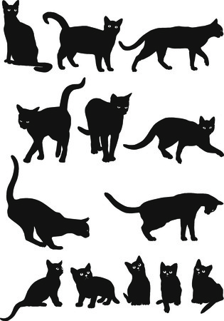 curvaceous: Vector black and white silhouettes of cats