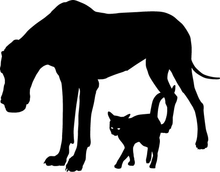 cat dog: Dog and cat, illustration of domestic friends Illustration