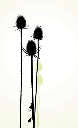 Illustration silhouette of thistle Vector