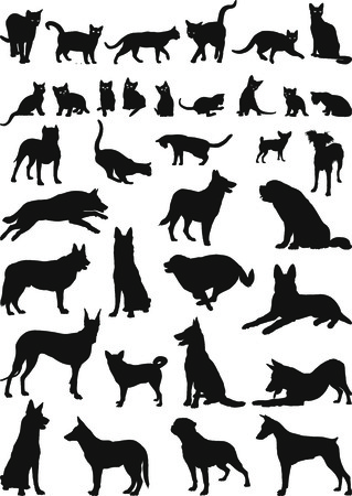 dog and cat: illustrations of domestic cats and dogs