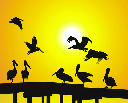 sunsets: Silhouette pelicans and sunsets over the pier Illustration