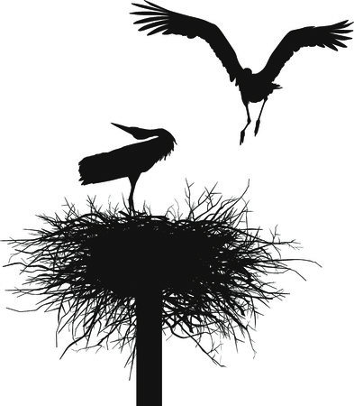 black stork: Silhouettes of two storks to nest