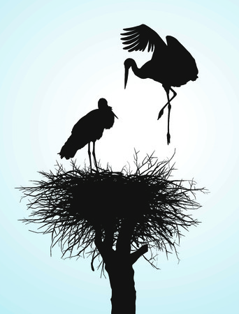 Black vector silhouettes of two storks to nest Vector