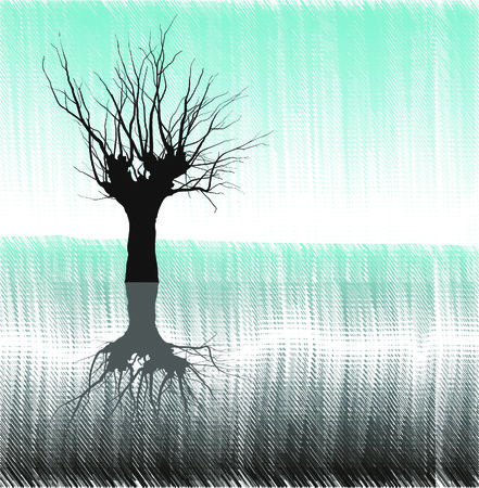deciduous tree: Dibujo solitario �rbol junto al lago