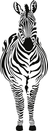 black and white line drawing: Zebra