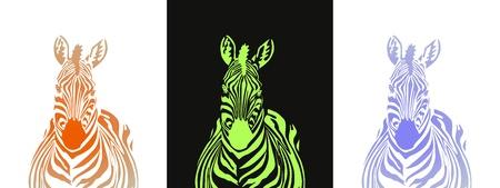 Zebra  Stock Vector - 9440784