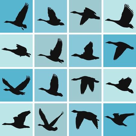 formations: vector illustratie wilde ganzen pattern-textieldruk en wallpapers