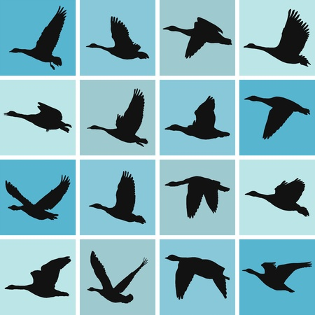 flock of birds: vector illustration wild geese pattern-textile printing and wallpapers