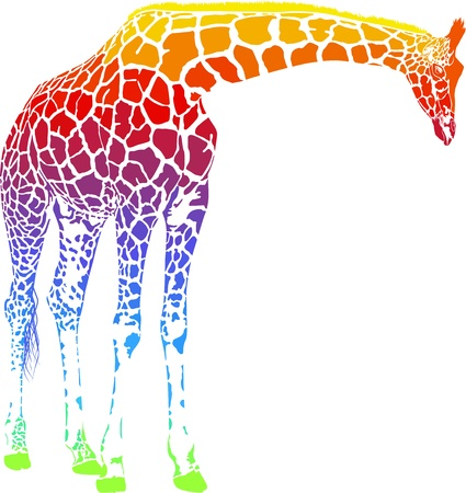 Giraffe with rainbow smokescreen camouflage
