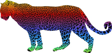 Leopard with rainbow smokescreen camouflage Stock Vector - 12252639