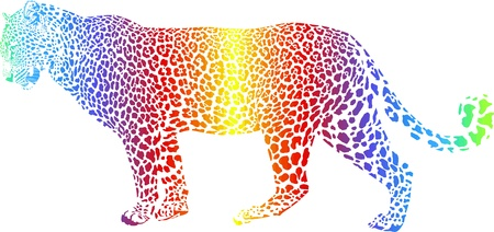 carnivore: Abstract rainbow leopard