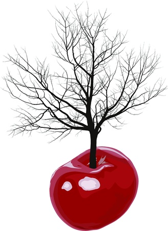 illustration of a tree growing out of cherries fruit Vector